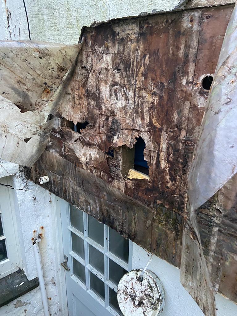 Anchor Cottage C05 Grey Lap woodgrain 3